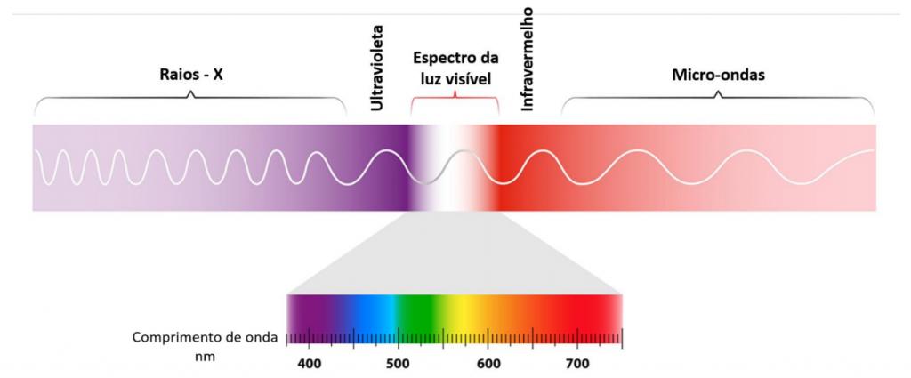 Fotossíntese: Espectro da luz visível e da luz invisível (nm – nanômetros) (Imagem: Shutterstock)